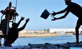 Pêche illicite, une réelle menace pour la biodiversité marine