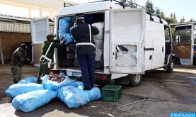 ADII: L'essentiel de la lutte contre les trafics illicites en 2019