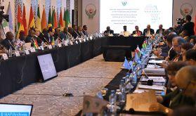 Afrique: l'UCESA préconise une démarche régionale pour lutter contre le Covid-19