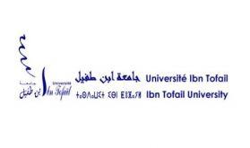 Classement THE: L'UIT de Kénitra dans le top mondial en Sciences physiques