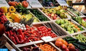 Canaries : L'agriculture bio, choix ou nécessité ?