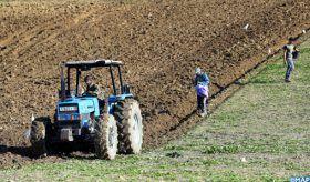 Covid-19 : Les opérateurs du secteur agricole continuent leur activité dans le respect strict des mesures sanitaires imposées
