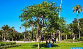 Fès-Meknès : Les espaces verts, des havres de fraicheur contre la chaleur