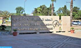 La Commission de la langue amazighe de l'UA: une interface pour miroiter le modèle marocain en matière de gestion de la diversité