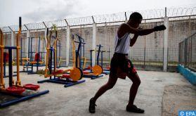 Kick-boxing : Session de formation à distance au profit des entraîneurs et arbitres