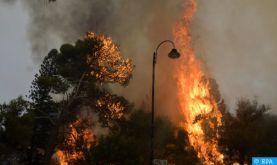Liban:des incendies ravagent plusieurs régions