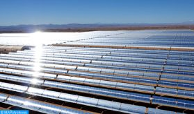 Au Maroc, la success story de l'énergie verte sous l'impulsion de SM le Roi
