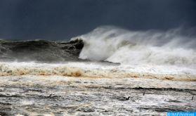 Les océans appellent au secours!