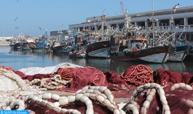 Ramadan : Hausse de 84% des Produits de la pêche côtière et artisanale commercialisés au niveau du port de Safi