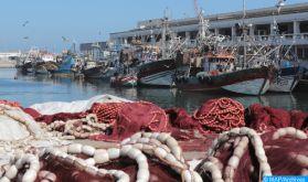 Port d'Essaouira : Les débarquements de la pêche côtière et artisanale en baisse de 48% à fin août (ONP)