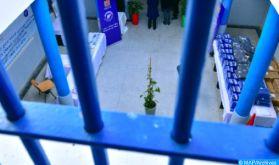 Présentation à Rabat d'un guide de gestion des grèves de la faim dans les prisons