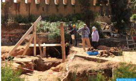 """Maroc: découverte d'un nouveau mosasaure du Crétacé, lézard marin aux """"dents de requins"""""""