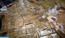 Guergarate : Mise en échec d'une tentative de trafic de près de six tonnes de chira