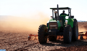 Campagne agricole 2019-2020: déploiement d'un programme spécifique d'appui à l'alimentation du cheptel